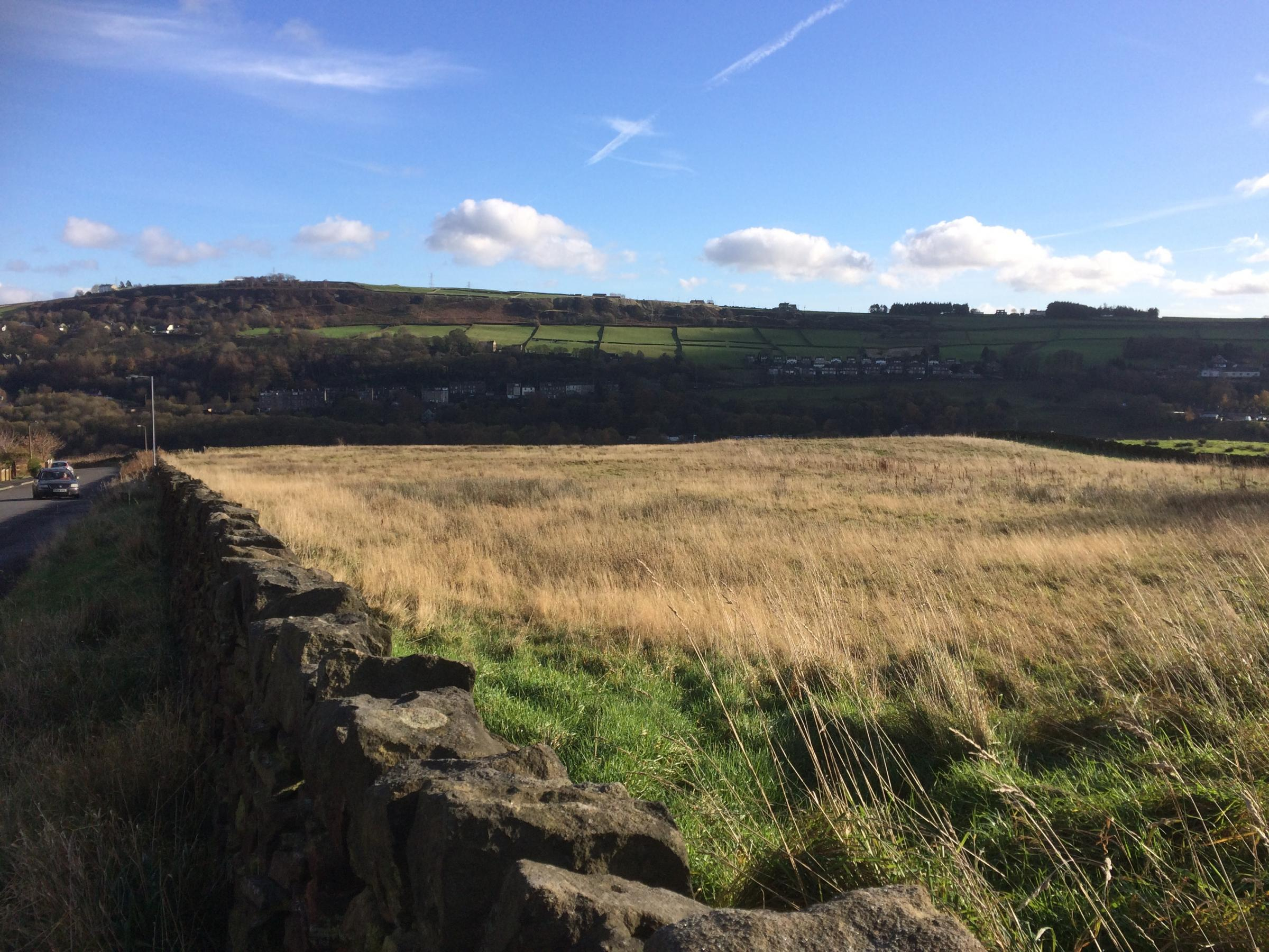 Goose Cote Lane housing battle is not over - Keighley News