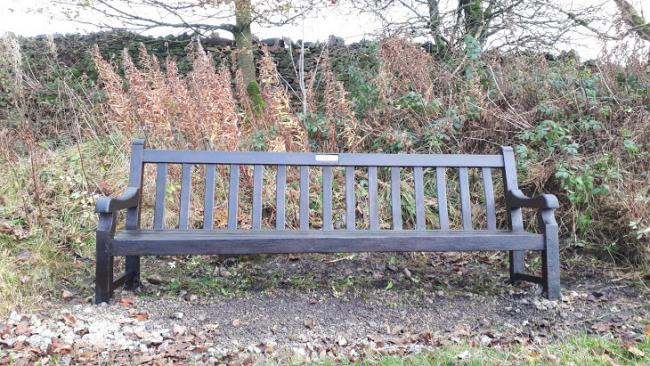 The bench in Slack Lane that has been varnished by Ian TIghe