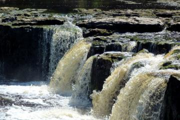 WALK: Fall in love with Herriot country