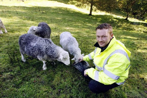 Philip Garbutt with some of the sheep who survived