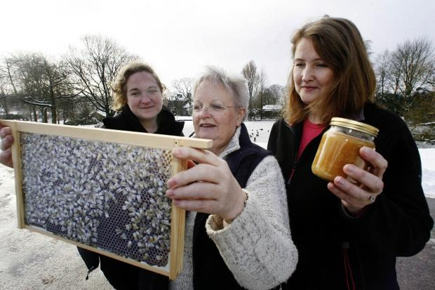 Shelley Hollingdrake, left, East Riddlesden Hall's community and learning officer, looks on as Aireale Beekeepers' Association secretary, Sue Chatfield, and committee member Suzanne Starling, right, display a frame from a 'virtual hive' and a jar