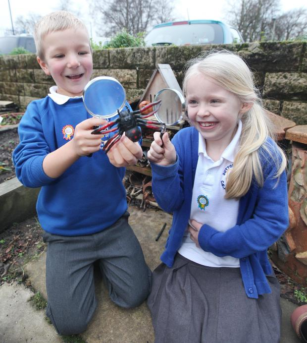 Keighley News: Pictured are pupils George Little and Millie Brookbank viewing spiders.
