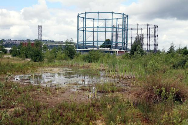 The site at Marley earmarked for the 'clean energy' plant