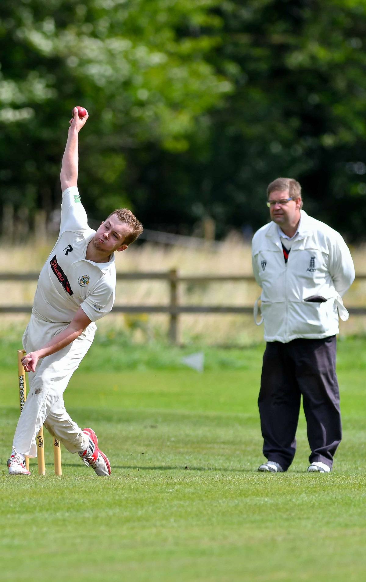 Jonny Teale took 5-20 off 3.1 overs as Bingley Congs defeated Ingrow St John's in the Manorlands Plate final at Oakworth