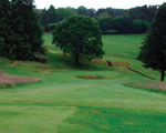 Keighley News: Ilkley Golf Club