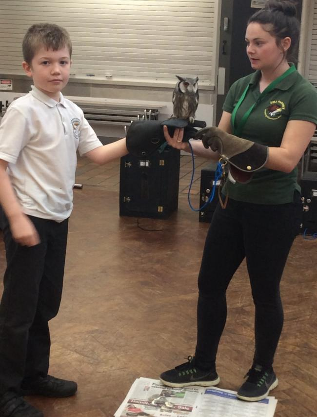 An Oxenhope Primary pupil gets to hold an owl, during a visit by SMJ Falconry
